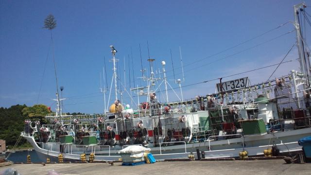 いか釣船2 24.5.31.jpg